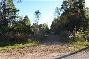 Photo of 15878 W Relza Drive, Splendora, TX 77372 (MLS # 74572370)