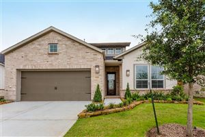 Photo of 13207 Fairfield Arbor Drive, Houston, TX 77059 (MLS # 24055371)