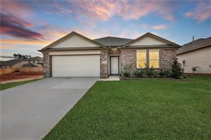 Photo of 12423 Southern Trail Court, Magnolia, TX 77354 (MLS # 12987382)