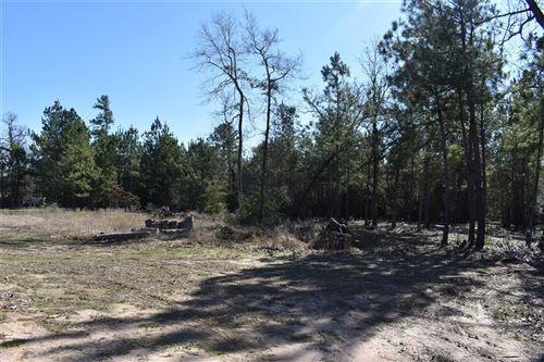 Photo of 25101 Calvary Charge, Magnolia, TX 77355 (MLS # 79104399)