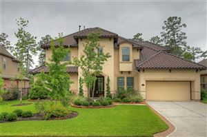 Photo of 23 Wrangler Pass Drive, The Woodlands, TX 77389 (MLS # 92440401)