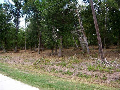 Photo of 0 Oak Hollow Drive, Dickinson, TX 77539 (MLS # 75161404)