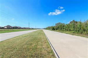 Photo of 0 0 County Road 58, Manvel, TX 77578 (MLS # 92971406)