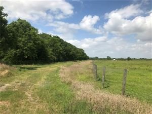 Photo of 0 County Road 184, Alvin, TX 77511 (MLS # 34703409)