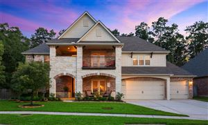 Photo of 140 Brendan Woods Lane, Conroe, TX 77384 (MLS # 74563409)