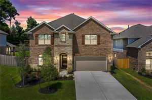 Photo of 165 Chestnut Meadow Drive, Conroe, TX 77384 (MLS # 18539463)