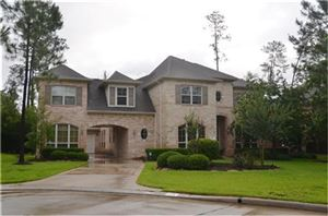 Photo of 26 Veilwood Circle, The Woodlands, TX 77382 (MLS # 12419469)