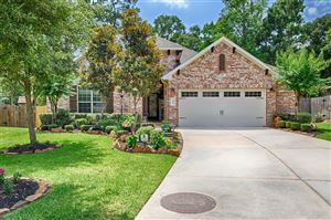 Photo of 118 Forest Elk Place Place, Montgomery, TX 77316 (MLS # 16092493)