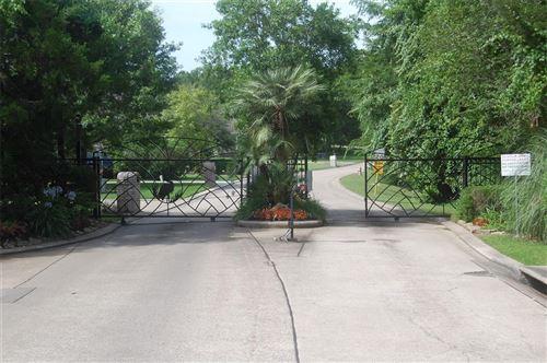Photo of 249 E Blue Heron Drive, Montgomery, TX 77316 (MLS # 21736512)