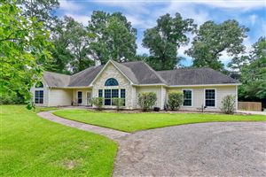 Photo of 30903 S High Meadow Circle, Magnolia, TX 77355 (MLS # 2580512)