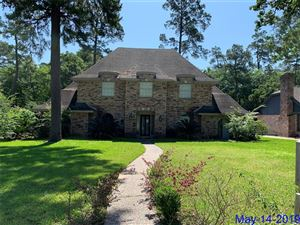 Photo of 24010 Creekview Drive, Spring, TX 77389 (MLS # 21883517)