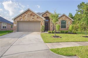 Photo of 3791 Paladera Place Court, Spring, TX 77386 (MLS # 40384540)