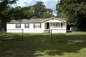 Photo of 136 CR 4136, Woodville, TX 75979 (MLS # 37240541)
