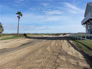 Photo of 1746 Redfish LN, Crystal Beach, TX 77650 (MLS # 65429546)
