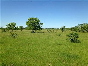Photo of 15246 Penick, Waller, TX 77484 (MLS # 80456548)