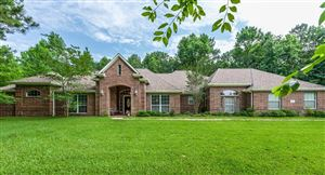 Photo of 12126 E Border Oak Drive, Magnolia, TX 77354 (MLS # 34895557)