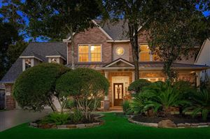Photo of 63 Degas Park Drive, The Woodlands, TX 77382 (MLS # 95348560)