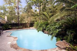 Photo of 4 E Torch Pine Circle, The Woodlands, TX 77381 (MLS # 42620563)