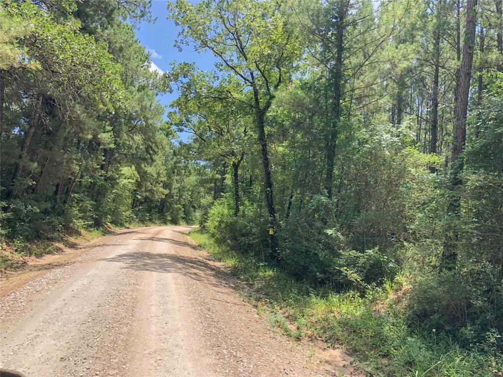 000000 Lost Indian Camp Road, Huntsville, TX 77320 - MLS#: 22101565