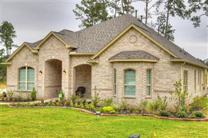 Photo of 17590 Country Meadow, Magnolia, TX 77355 (MLS # 19825577)