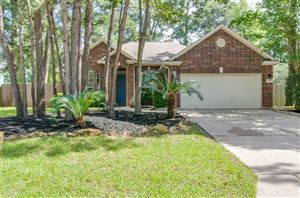 Photo of 6 Leaf Spring Place, Spring, TX 77382 (MLS # 43818592)
