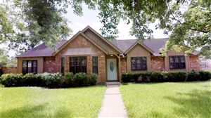 Photo of 223 W Castle Harbour Drive, Friendswood, TX 77546 (MLS # 79463603)