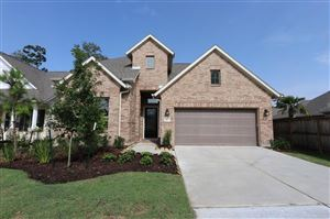Photo of 28238 Noble Wood Drive, Spring, TX 77386 (MLS # 21533617)