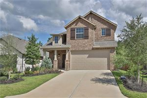 Photo of 319 Tangle Birch Court, Montgomery, TX 77316 (MLS # 95309626)