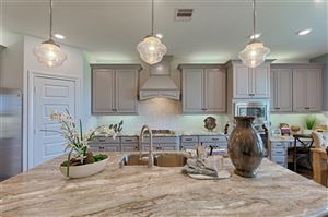 Photo of 1702 Orchard Berry Lane, Katy, TX 77494 (MLS # 11243629)
