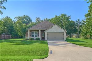 Photo of 9130 Red Stag Lane, Conroe, TX 77303 (MLS # 86197630)