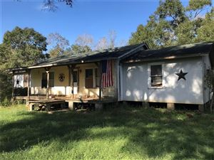 Photo of 1810 County Road 133, Liberty, TX 77575 (MLS # 93016639)