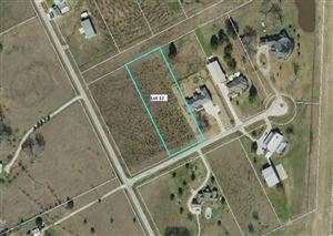 Photo of Lot 12 Longhorn Loop Court, New Waverly, TX 77358 (MLS # 76512643)