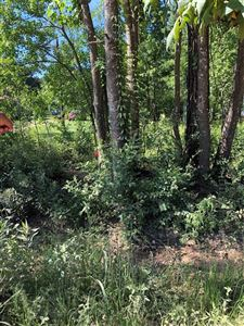 Photo of 221 Trail End Drive, Cleveland, TX 77327 (MLS # 19944645)