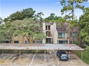 Photo of 3500 Tangle Brush Drive #143, The Woodlands, TX 77381 (MLS # 82766700)