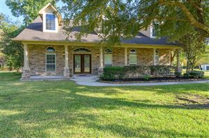 Photo of 15595 Nicholas Court, Montgomery, TX 77316 (MLS # 74749728)
