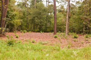 Photo of TBD Holly Drive, Montgomery, TX 77356 (MLS # 35325729)