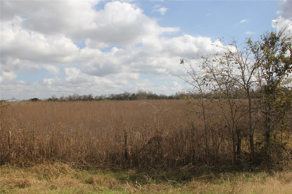 000 County Road 103, Boling, TX 77420 - MLS#: 49636743
