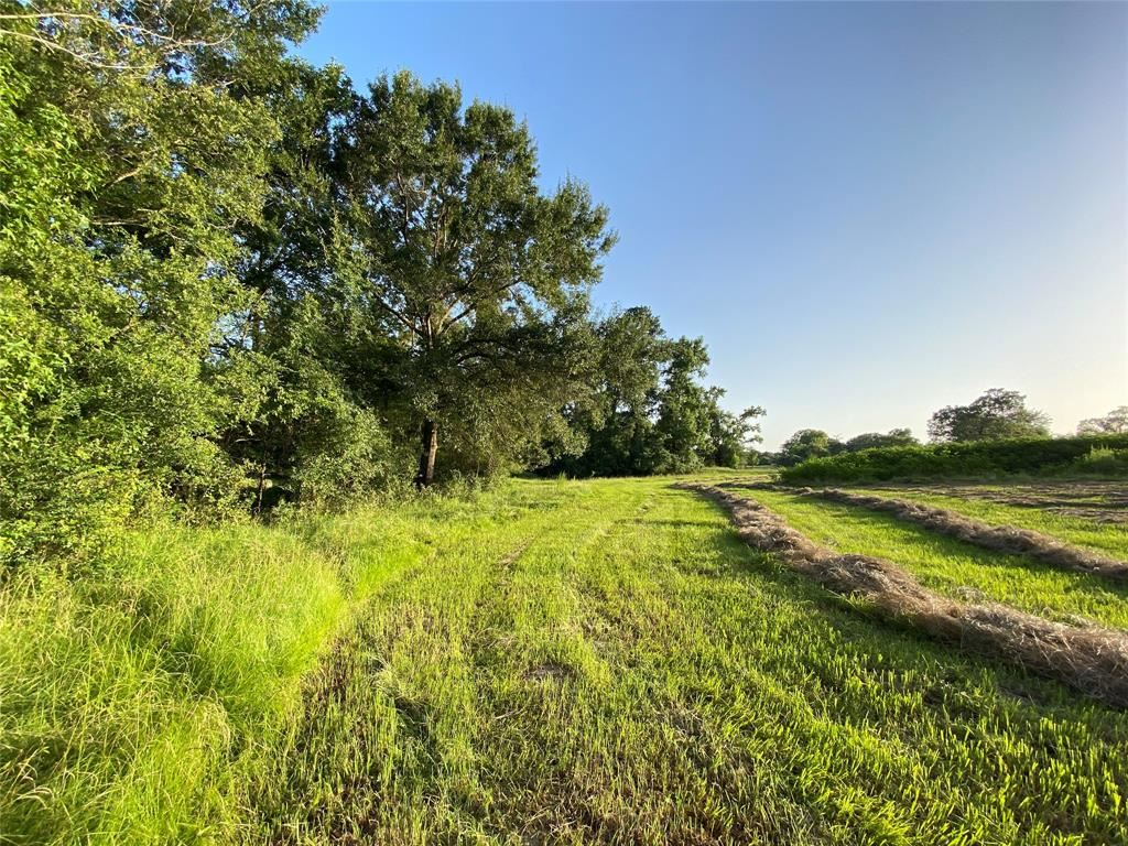 Photo for A0035-1 FM 1486, Montgomery, TX 77316 (MLS # 37004745)