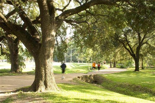 Tiny photo for 4102 Blossom Street, Houston, TX 77007 (MLS # 86054753)