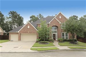 Photo of 16106 Pagett Place Court, Houston, TX 77044 (MLS # 55702769)