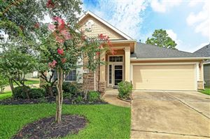 Photo of 13726 Crested Iris Drive, Cypress, TX 77429 (MLS # 32336802)