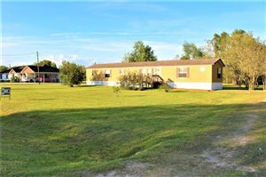 Photo of 7483 County Road 215a, Alvin, TX 77511 (MLS # 93166812)