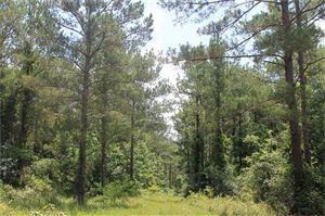Photo of 965 Acres U.S. 190, Huntsville, TX 77340 (MLS # 47437820)