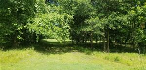 Photo of Lot 444 Center Drive, Cleveland, TX 77327 (MLS # 82563829)