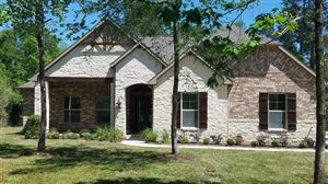 Photo of 11516 Kirstens Court, Montgomery, TX 77316 (MLS # 72481858)
