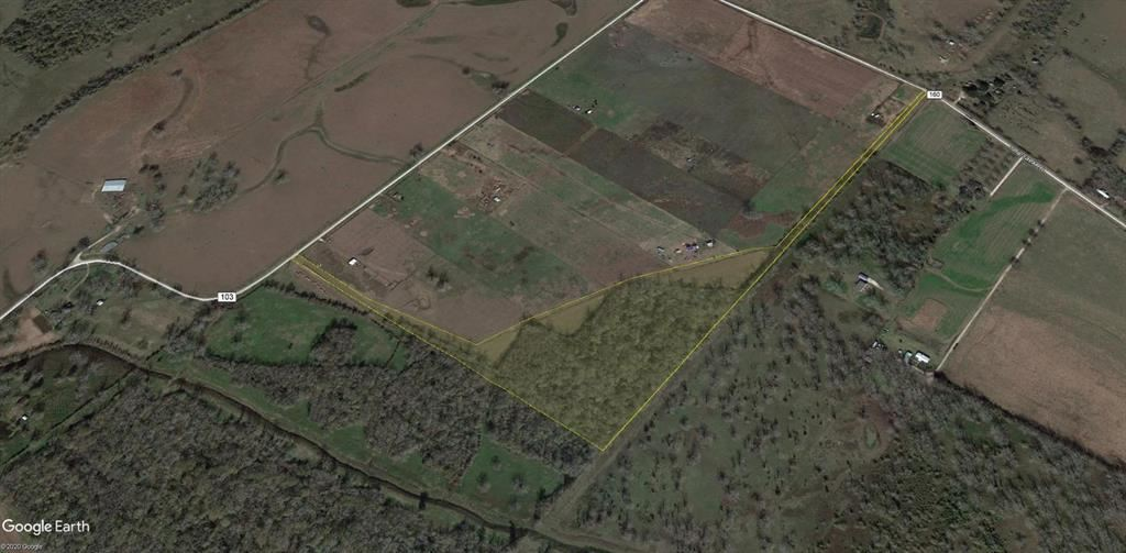 TBD County Rd 103, Boling, TX 77420 - MLS#: 40149865