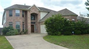 Photo of 12019 Brantley Haven Drive, Tomball, TX 77375 (MLS # 48834872)