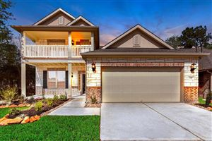 Photo of 137 South Carson Cub Court, Montgomery, TX 77316 (MLS # 36204873)