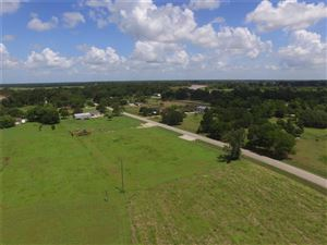 Photo of 0 Little Dogie Rd Road, Simonton, TX 77476 (MLS # 77020893)