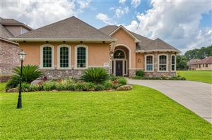 Photo of 118 Wyndemere Drive, Montgomery, TX 77356 (MLS # 89692907)